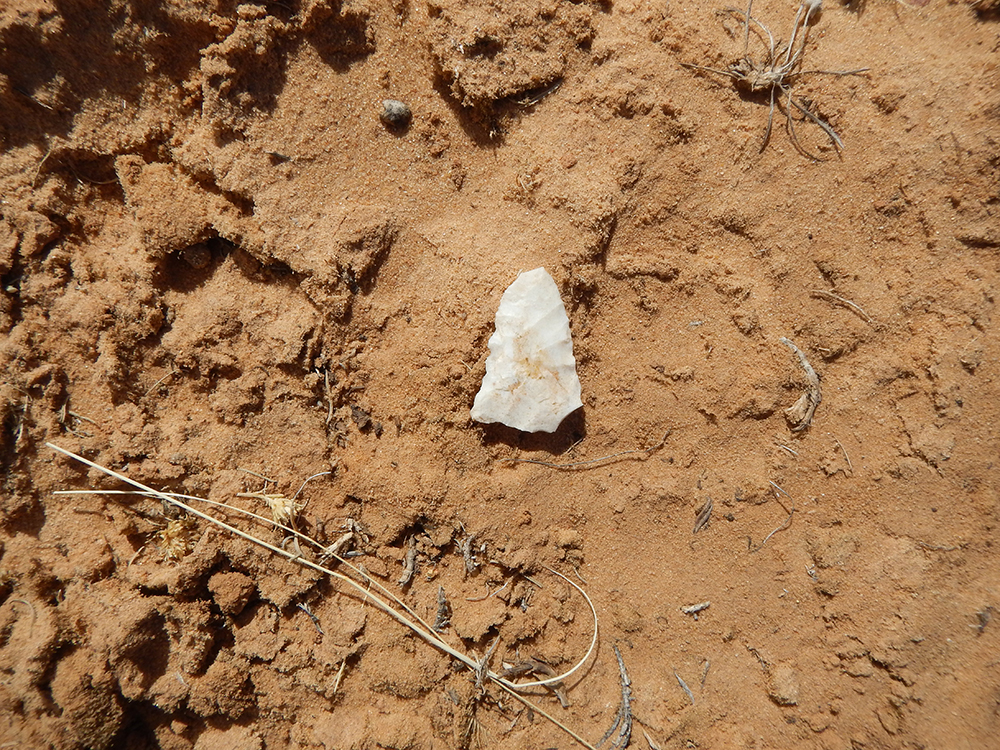 Lithic_2