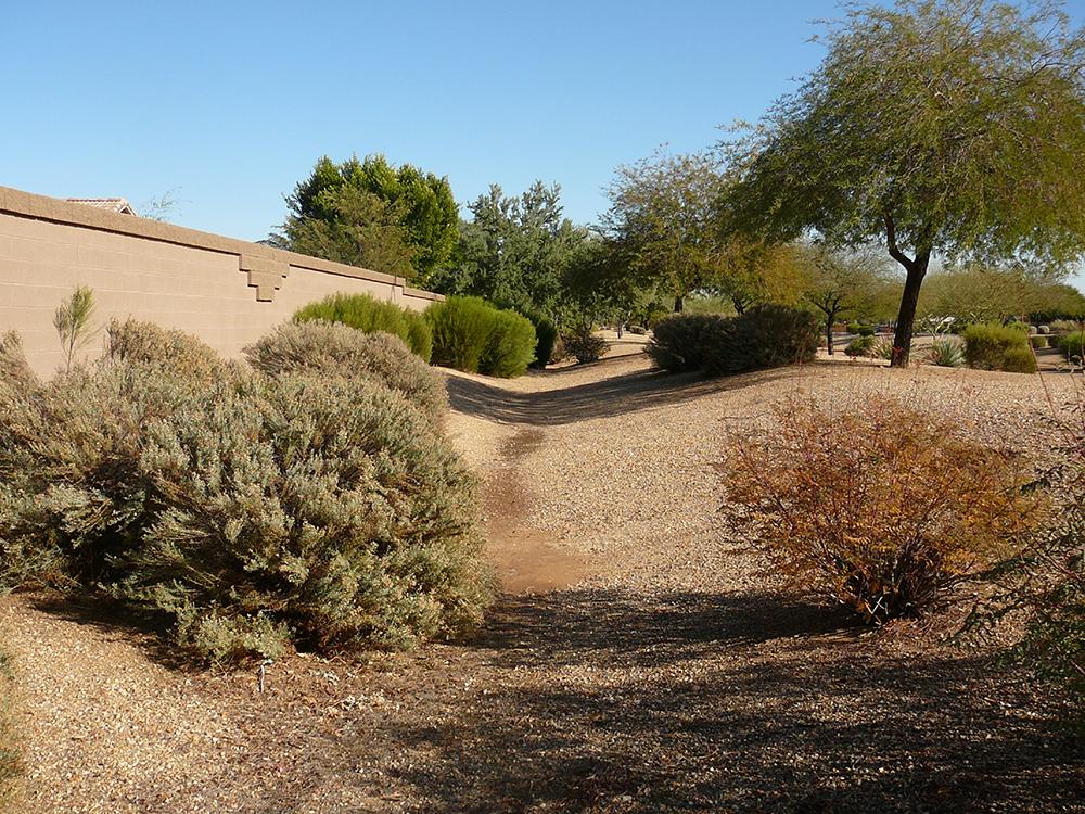 Lower El Mirage Wash