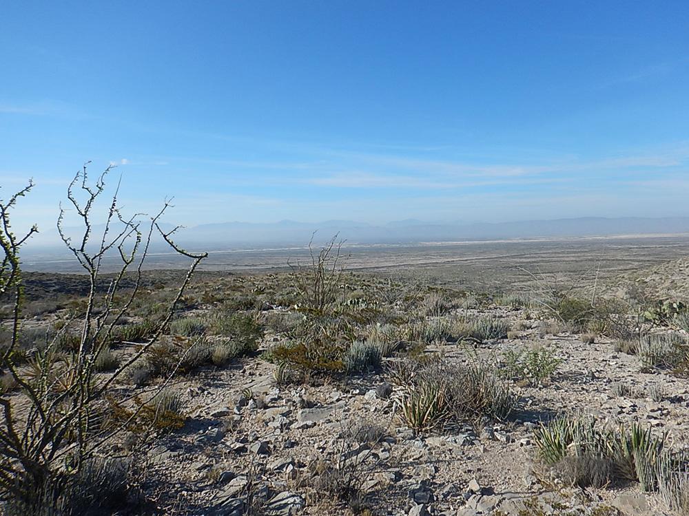 Coahuila project site